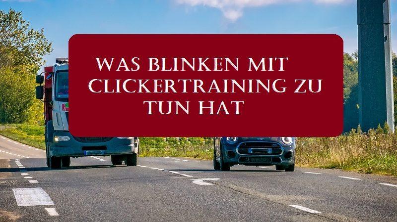 Was Blinken mit Clickertraining zu tun hat